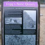 TeggsNose 059